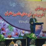 اشتغال ۲۰ هزار نفر در منطقه تربت حیدریه وابسته به زعفران است