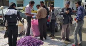 نمایندگان استانهای خراسان خواستار دخالت رئیس جمهوری در رفع مشکل قیمت زعفران شدند